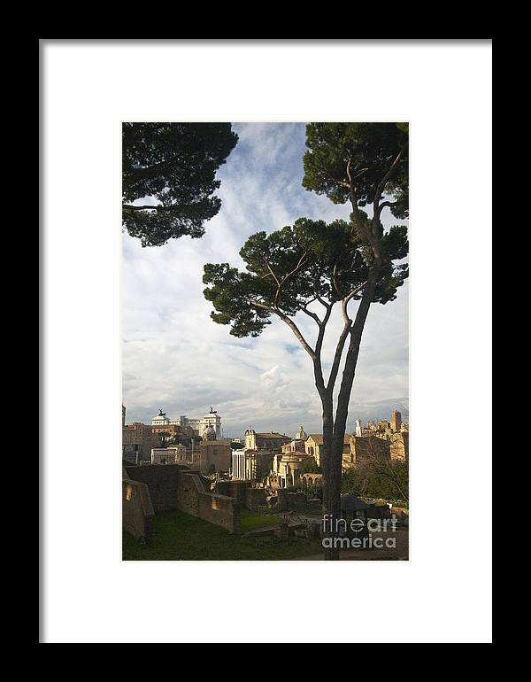 Rome Framed Print featuring the photograph Roman Forum by Louise Fahy