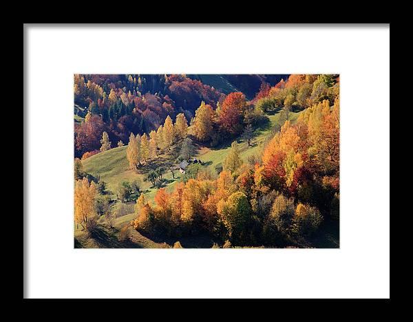 Autumn Framed Print featuring the photograph Romania, Transylvania, Carpathian by Emily Wilson