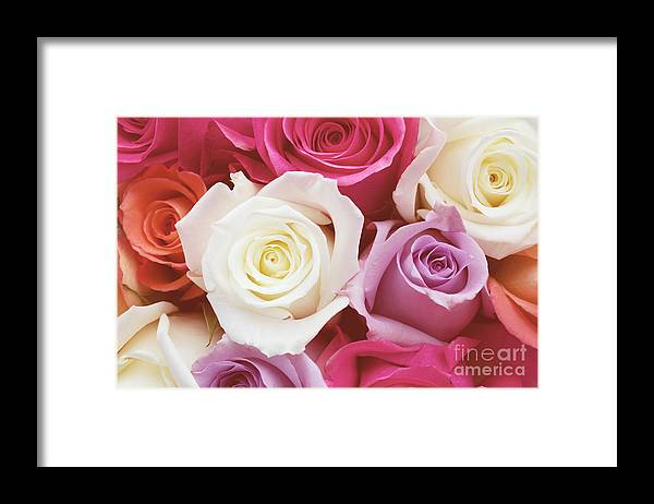 Romantic Flower Photo Framed Print featuring the photograph Romantic Rose Garden by Kim Fearheiley
