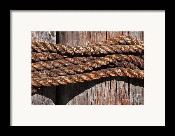 Rope Framed Print featuring the photograph Roped by Dan Holm