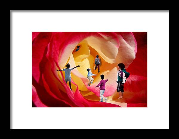 Rose Framed Print featuring the digital art Rose Labyrinth by Lisa Yount