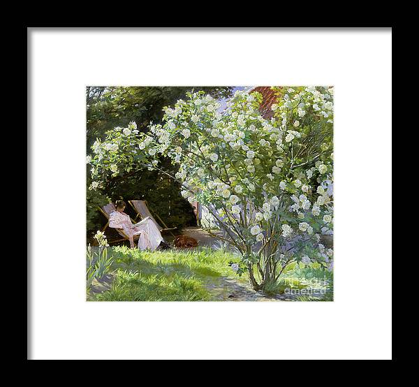 Rosebush Framed Print featuring the painting Roses by Peder Severin Kroyer