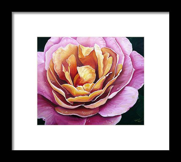 Rose Painting Pink Yellow Floral Painting Flower Bloom Botanical Painting Botanical Painting Framed Print featuring the painting Rosy Dew by Karin Dawn Kelshall- Best