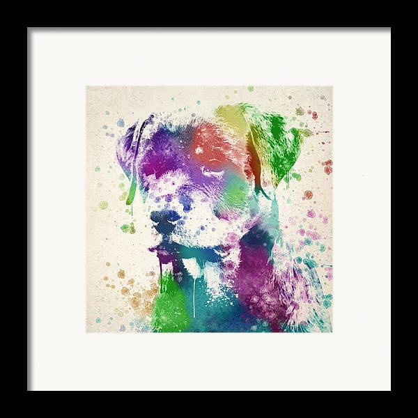 Rottweiler Framed Print featuring the drawing Rottweiler Splash by Aged Pixel