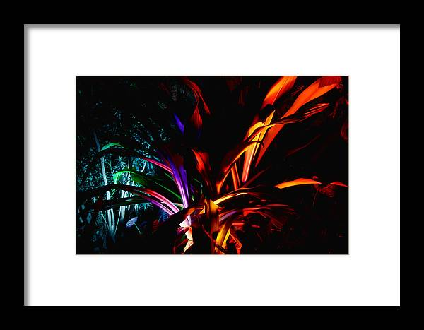 Botanical Framed Print featuring the photograph Roy G Biv by Guy Whiteley