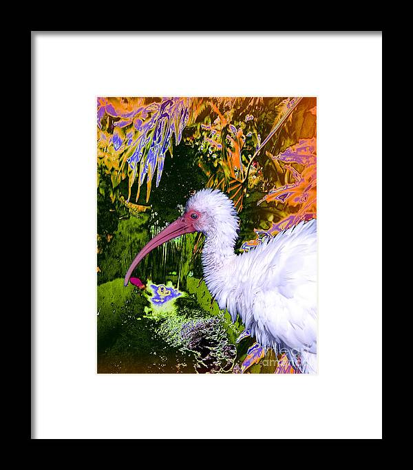 Ibis Framed Print featuring the digital art Ruffled Feathers by Doris Wood