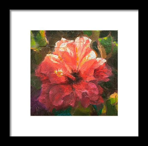 Ruffled Light Double Hibiscus Flower Framed Print By Karen Whitworth