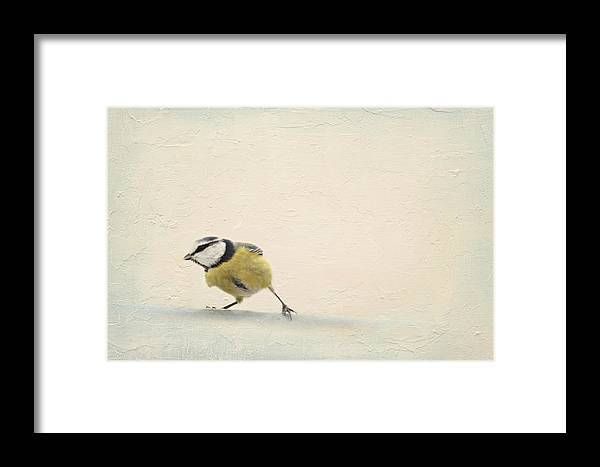Image Processing Framed Print featuring the mixed media Running Tit by Heike Hultsch