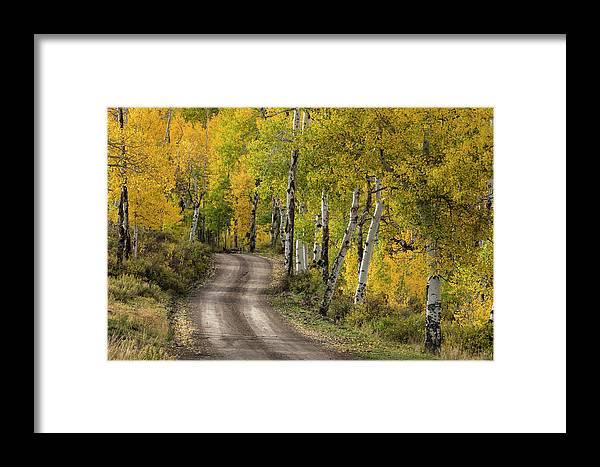 Adam Jones Framed Print featuring the photograph Rural Forest Service Road by Adam Jones
