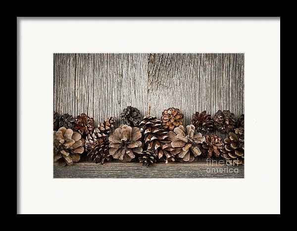 Wood Framed Print featuring the photograph Rustic Wood With Pine Cones by Elena Elisseeva