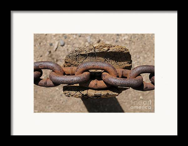 Chain Framed Print featuring the photograph Rusting Resting by Dan Holm