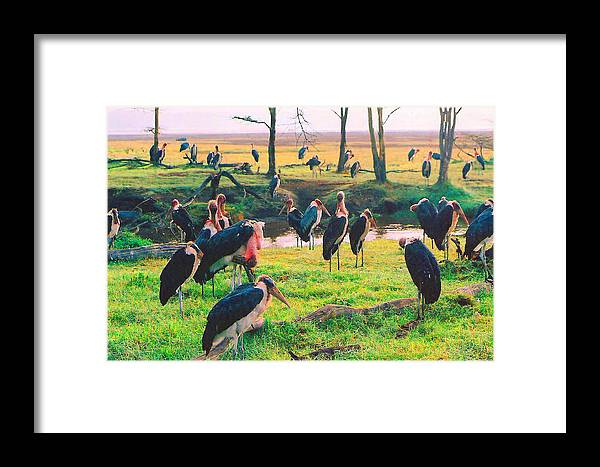 Birds Framed Print featuring the digital art Safari Birds by Joseph Wiegand