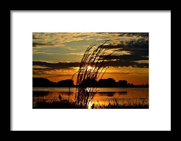 Sage Grass Framed Print featuring the photograph Sage Grass Sunset by Ronald Goode
