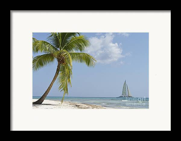 Getting Away From It All Framed Print featuring the photograph Sailboat Passing By Tropical Beach by Sami Sarkis