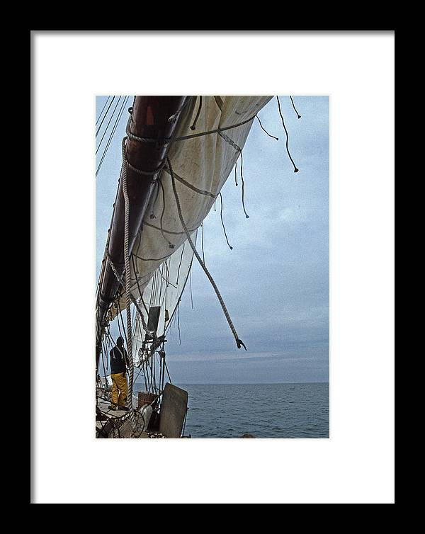 Md Framed Print featuring the photograph Sailing A Skipjack by Skip Willits