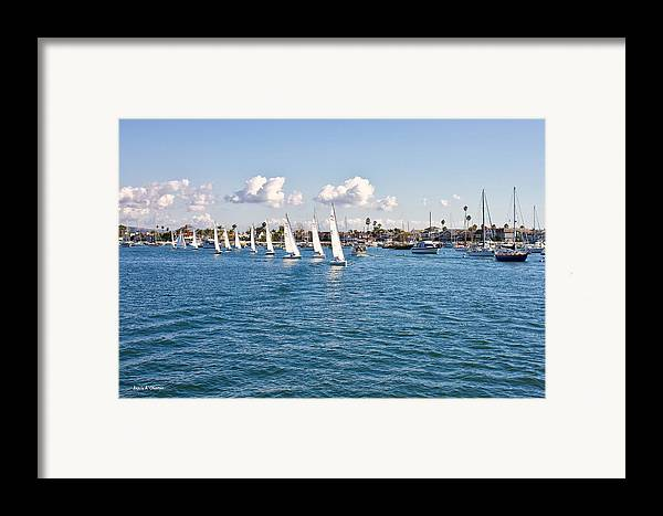 Photograph Framed Print featuring the photograph Sailing by Angela A Stanton
