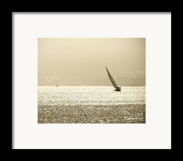 Sailing In San Diego Framed Print featuring the photograph Sailing In San Diego Harbor by Artist and Photographer Laura Wrede