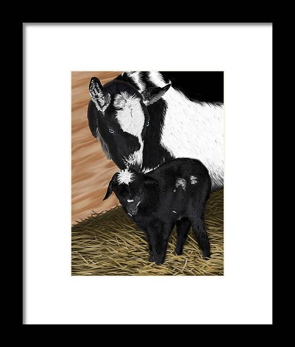 Goat Framed Print featuring the digital art Sam-e at one hour by Myke Irving