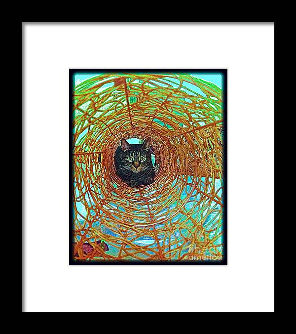 Gray Cat Prints Framed Print featuring the digital art Sammy's Rainbow by Delona Seserman