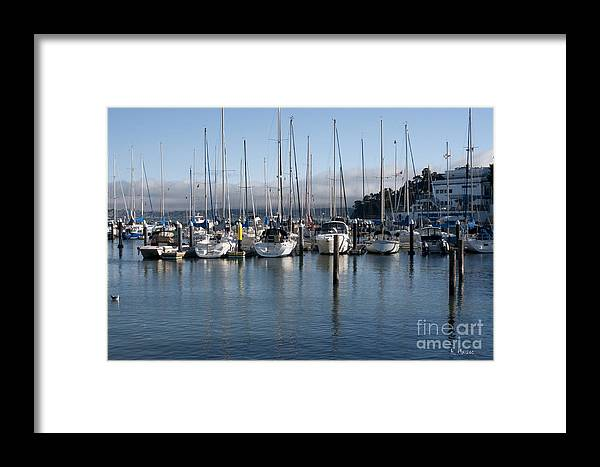 Landscape Framed Print featuring the photograph San Francisco by Haleh Mahbod