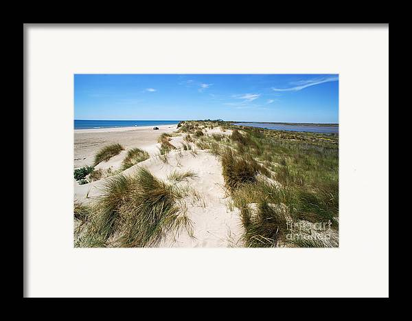 Scenics Framed Print featuring the photograph Sand Dunes Separation by Sami Sarkis