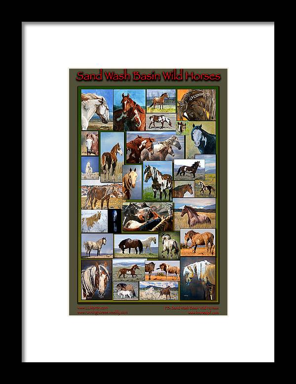 Mustangs Framed Print featuring the photograph Sand Wash Basin Wild Horses by Lourie Zipf