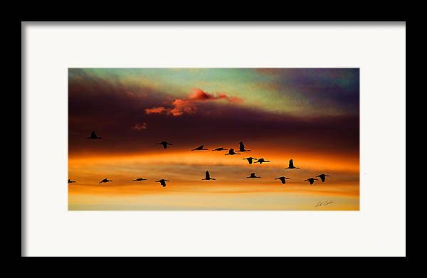 Bill Kesler Photography Framed Print featuring the photograph Sandhill Cranes Take The Sunset Flight by Bill Kesler