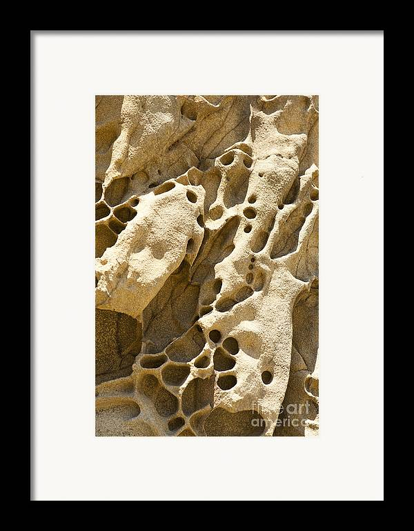 Point Lobos Framed Print featuring the photograph Sandstone Rock Formation Two At Big Sur by Artist and Photographer Laura Wrede