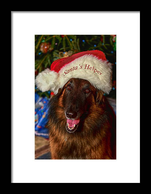Santa Hat Framed Print featuring the photograph Santa's Helper by Gary Hall