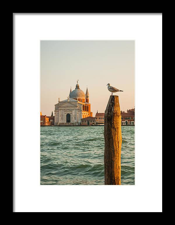 Animal Framed Print featuring the photograph Santissimo Redentore At Sunset by Gurgen Bakhshetsyan