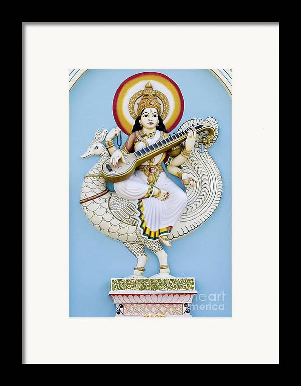 Saraswati Framed Print featuring the photograph Saraswati by Tim Gainey