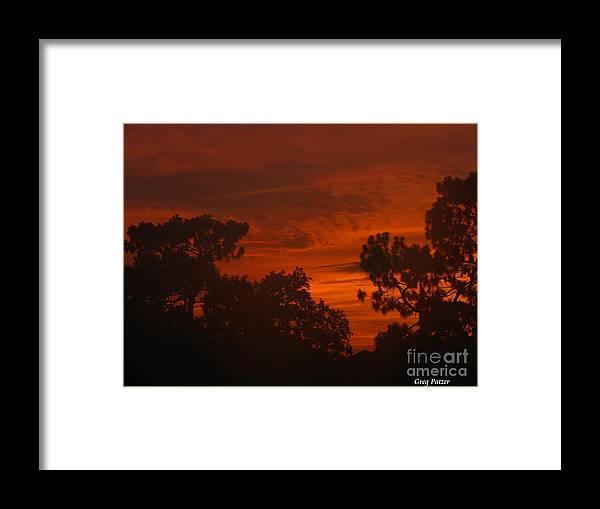 Patzer Framed Print featuring the photograph Savanna by Greg Patzer