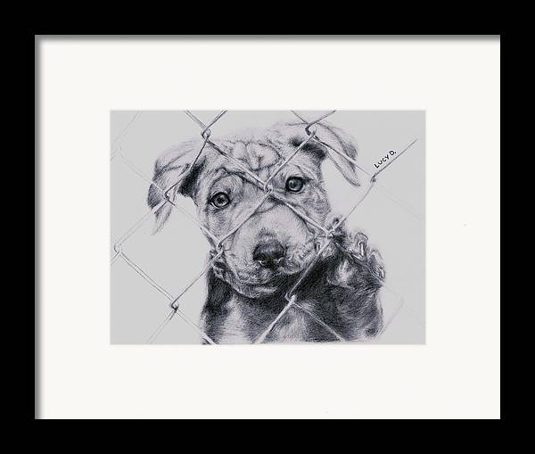 Animals Framed Print featuring the drawing Save Me by Lucy D