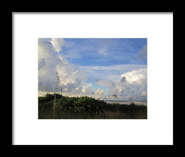 Framed Print featuring the photograph Sb28 by Pepsi Freund