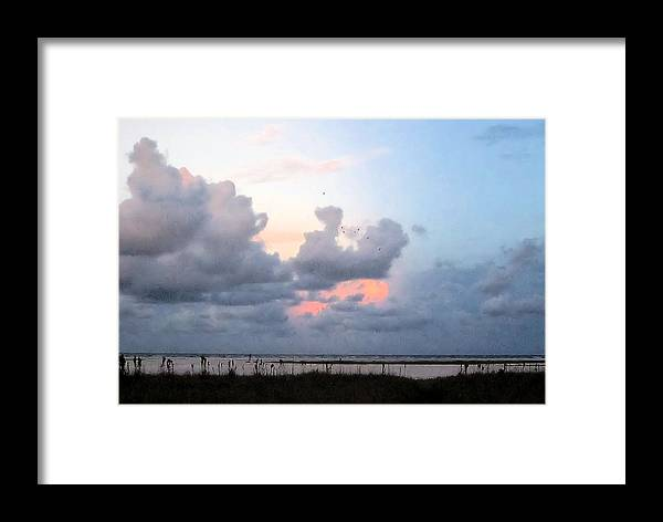 Framed Print featuring the photograph Sb31 by Pepsi Freund