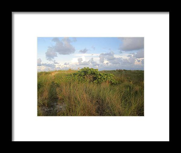 Framed Print featuring the photograph Sb36 by Pepsi Freund