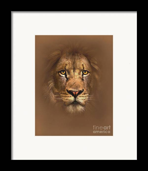 Lion Framed Print featuring the painting Scarface Lion by Robert Foster