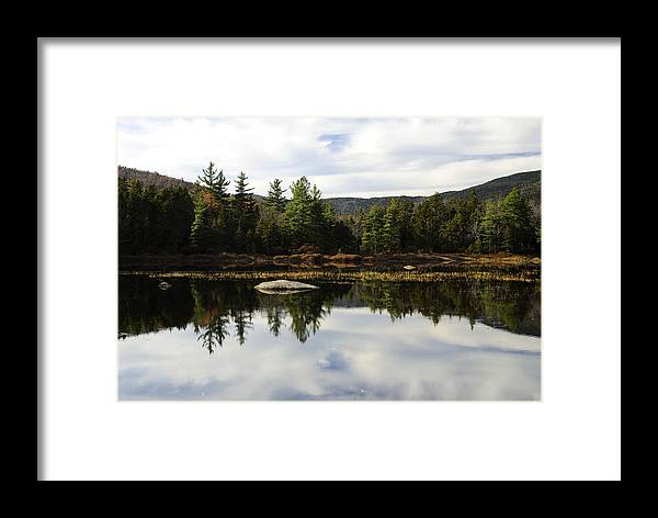 Autumn Framed Print featuring the photograph Scenic Lily Pond by Luke Moore