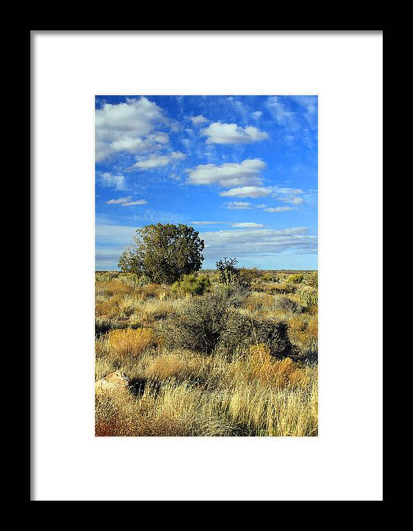 Clouds Framed Print featuring the photograph Scrubland by Jennifer Robin