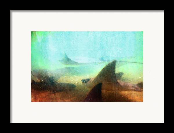 Ray Framed Print featuring the painting Sea Spirits - Manta Ray Art By Sharon Cummings by Sharon Cummings