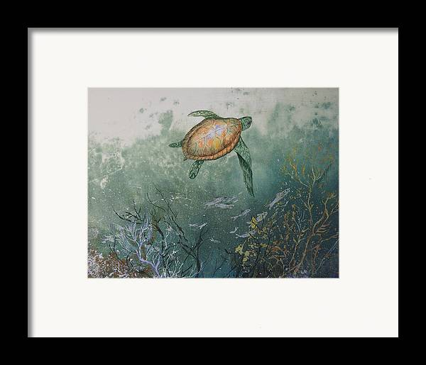 Gyotaku Framed Print featuring the mixed media Sea Turtle by Nancy Gorr
