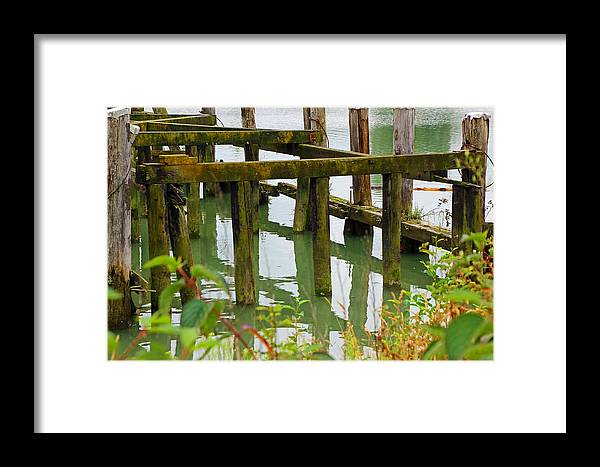 Fishing Framed Print featuring the photograph Seagull Nesting Dock by Mark Tsemak