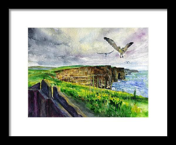 Seagulls at the Cliffs of Moher by John D Benson