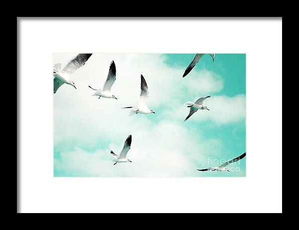 Seagull Photography Framed Print featuring the photograph Seagulls Soaring by Kim Fearheiley