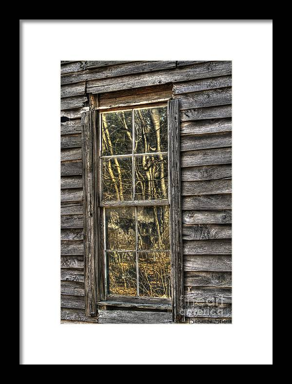 North Carolina Framed Print featuring the photograph Seasons Past by Benanne Stiens