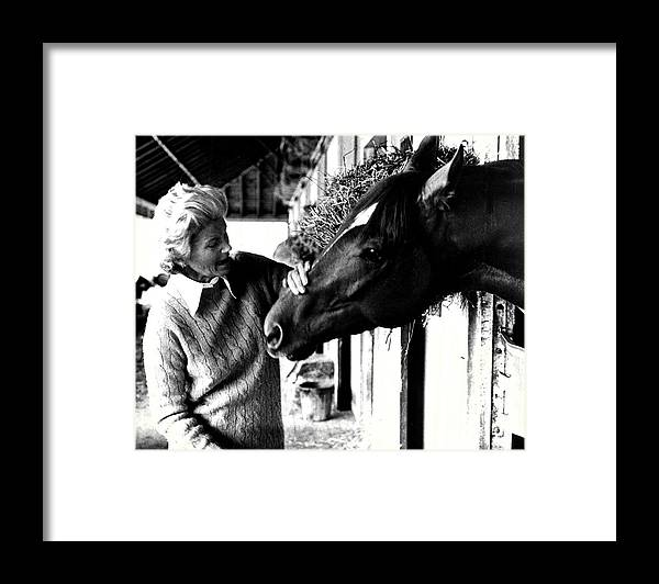Classic Framed Print featuring the photograph Secretariat Vintage Horse Racing #20 by Retro Images Archive