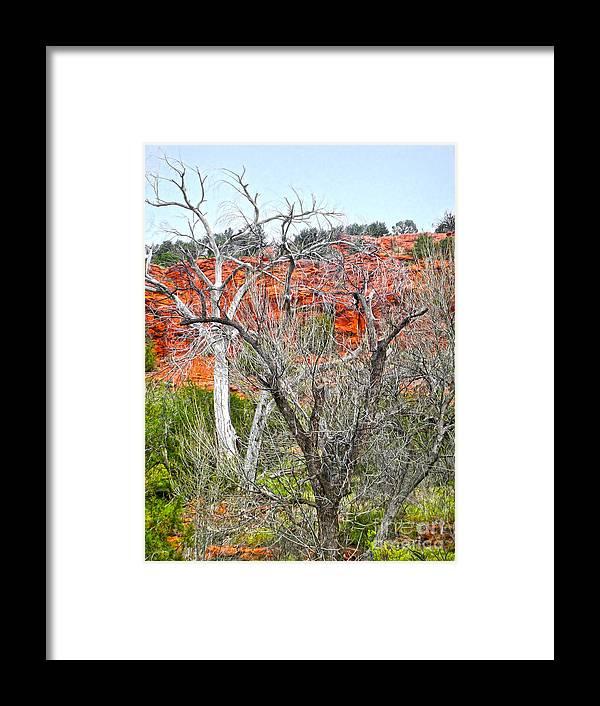 Sedona Arizona Dead Tree Framed Print featuring the photograph Sedona Arizona Dead Tree by Gregory Dyer