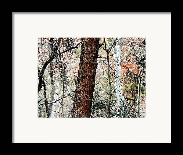 Red Framed Print featuring the photograph Sedona Layers by Todd Sherlock