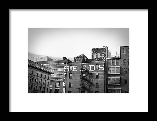 Black And White Framed Print featuring the photograph Seeds Building Two by Todd Hartzo