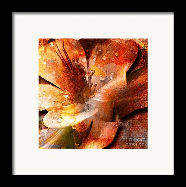 Framed Print featuring the mixed media Seeds II by Yanni Theodorou